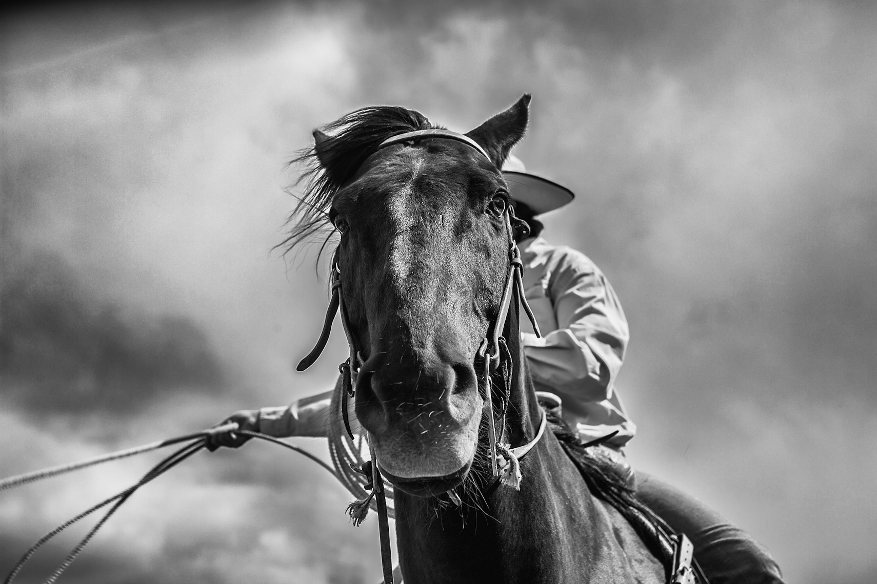Cowboy Cattle Branding, Wilsal Montana by Dave White Phtographer 5