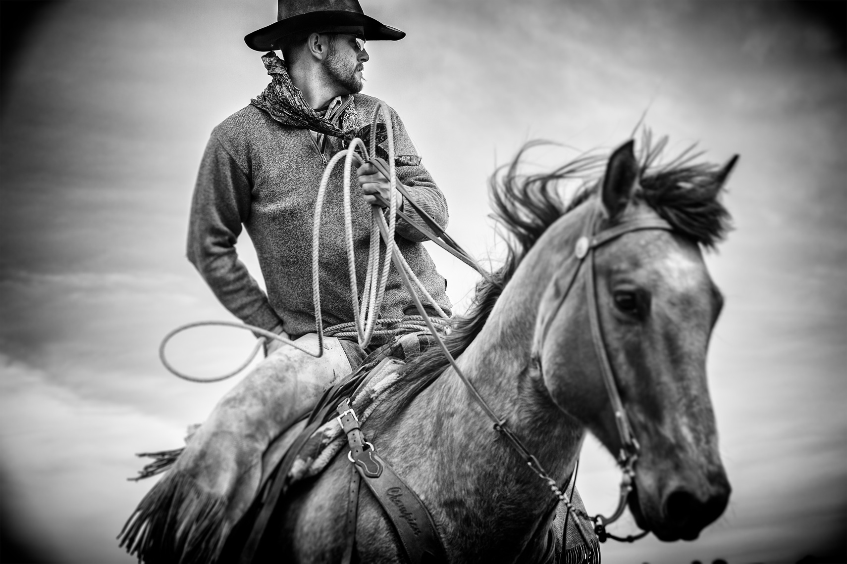 Cowboy Cattle Branding, Wilsal Montana by Dave White Phtographer 2