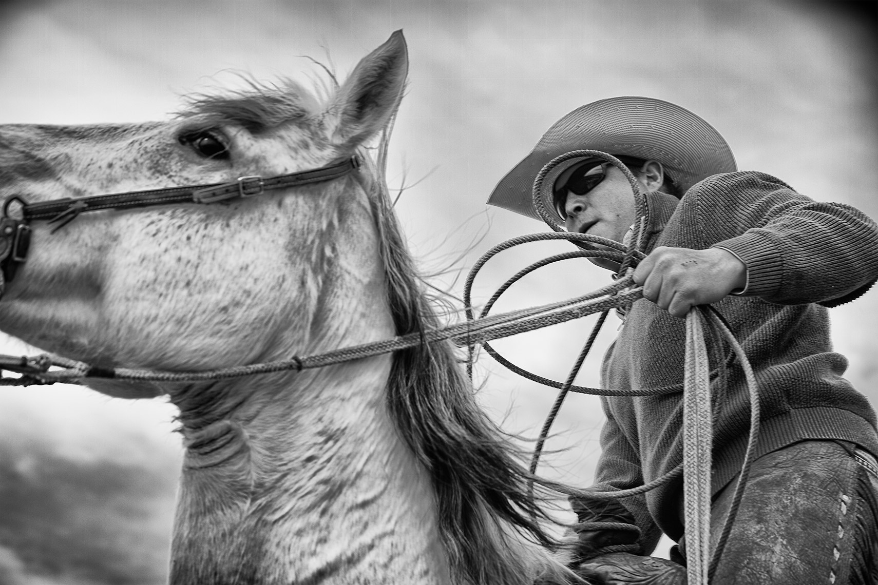 Cowboy Cattle Branding, Wilsal Montana by Dave White Phtographer 3