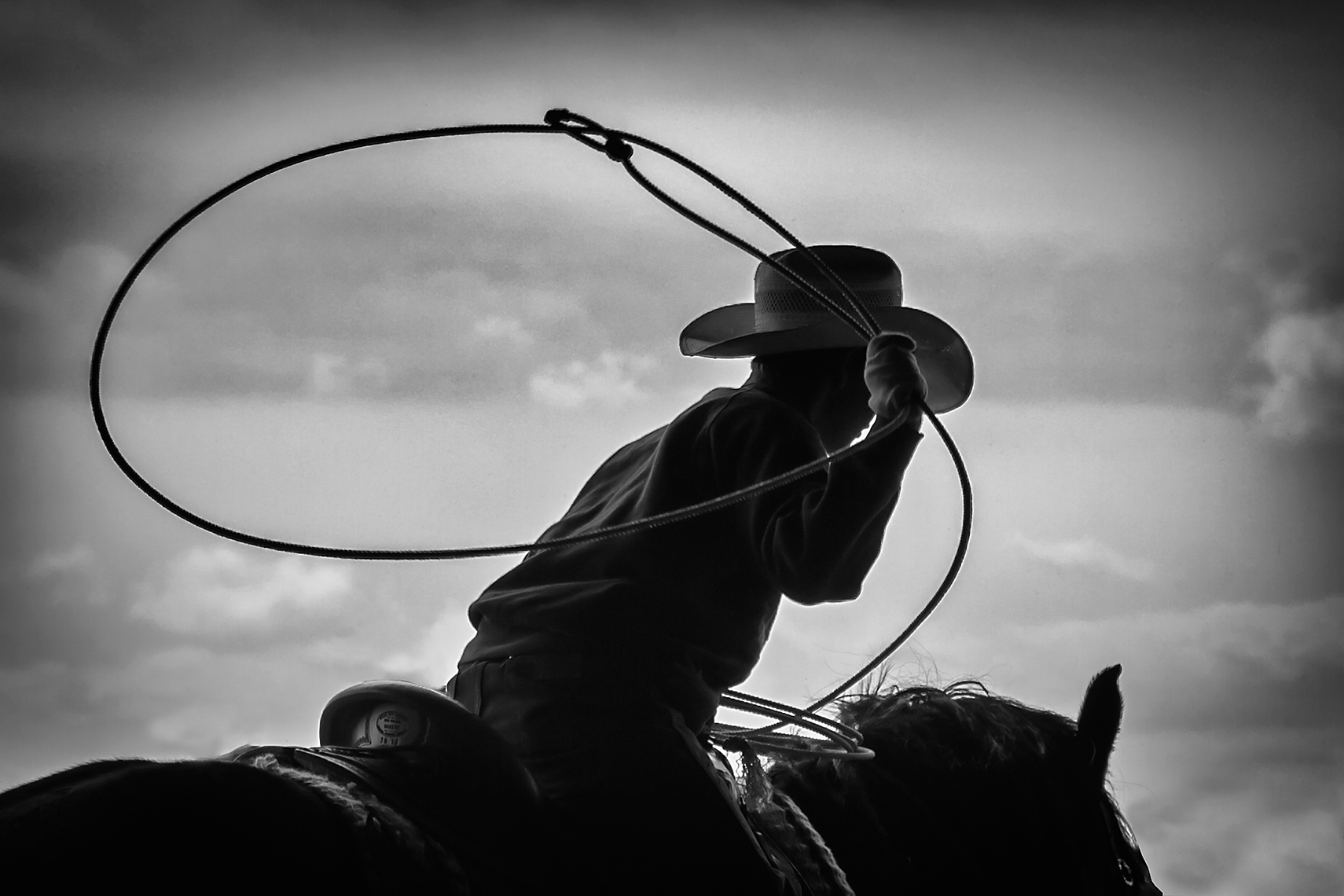 Cowboy Cattle Roping, Wilsal Montana by Dave White Photographer