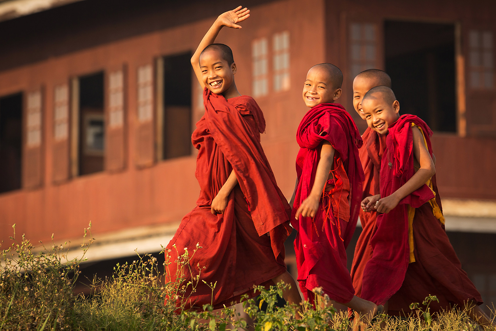 Monk-Novitiates-Burma by Dave White in Myanmar